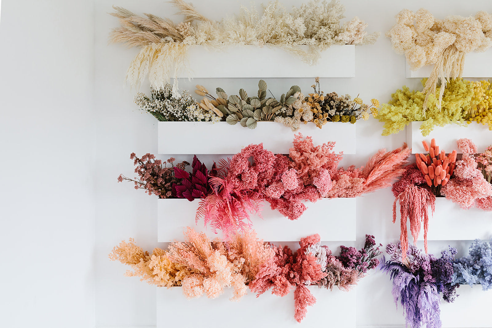 https://www.bhg.com.au/dried-flower-trend