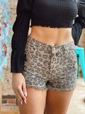 Born to be Wild Leopard Shorts
