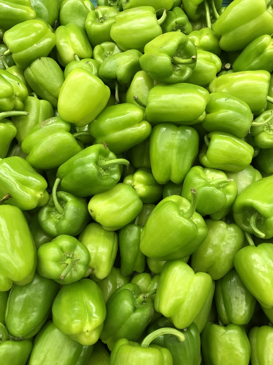 Bell Peppers - Green