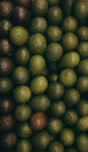 Load image into Gallery viewer, Avocados-Haas