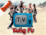 FlickstreamTV-KungFu