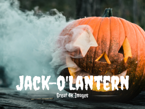 Jack-o'Lantern Great 4K Images