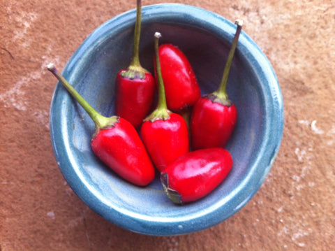 Peruvian Purple Hot Pepper