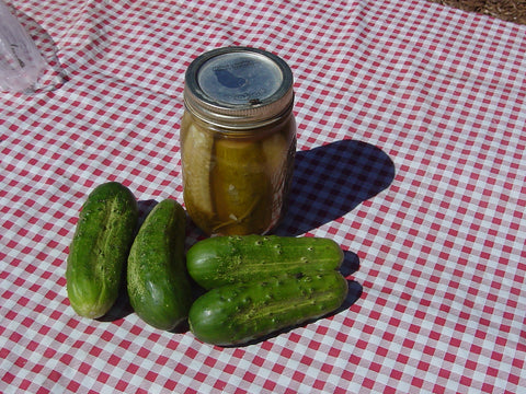 Snow'S Fancy Pickling Cucumber