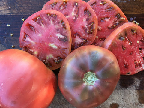 Purple Cherokee Tomato