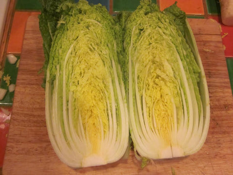 Nozaki Early Chinese Cabbage