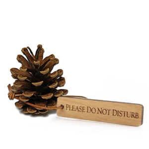 Please do not disturb pine cone from The Lodge at Torrey Pines