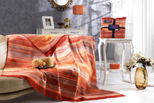 Load image into Gallery viewer, Antdecor Silver Collection Double Cotton Blanket Penn