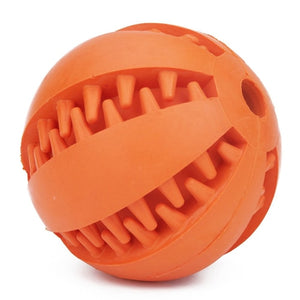 Interactive Elasticity Ball Dog Chew Toys