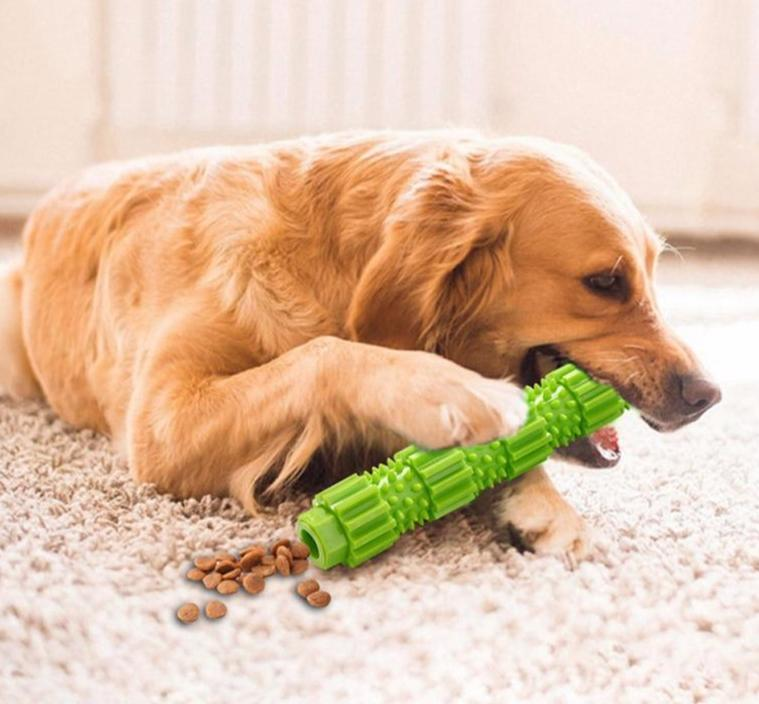 Dog Chew Toy Treat dispenser