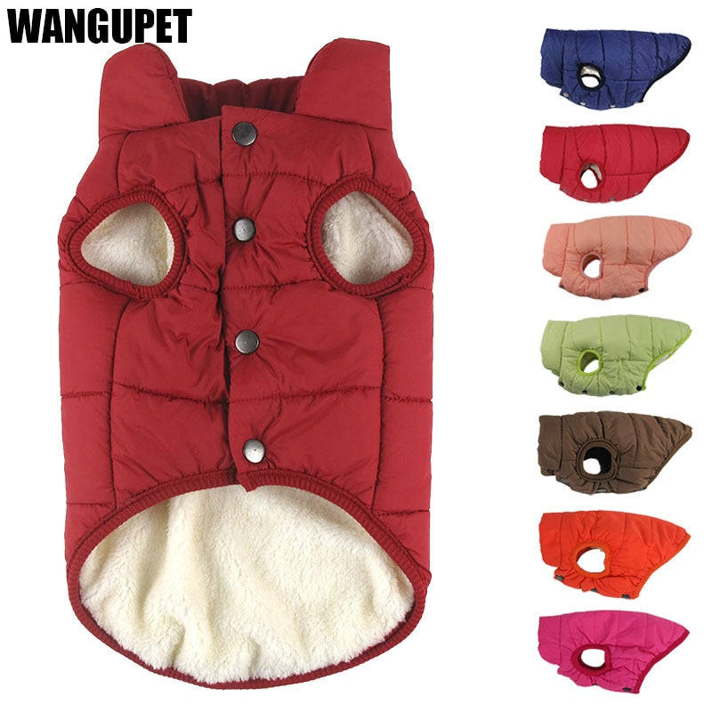 Winter coat clothes for dogs