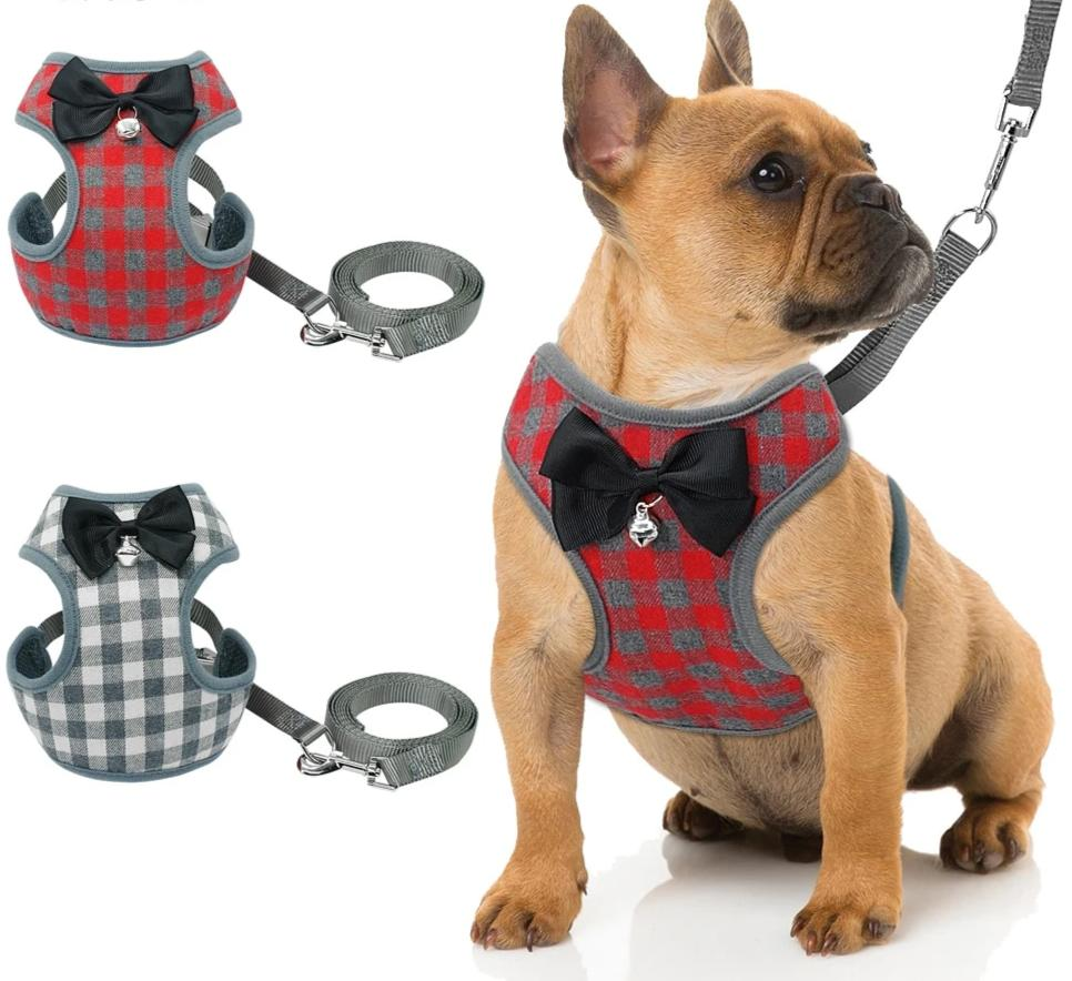 Small Dog Harness and Leash Set Pet