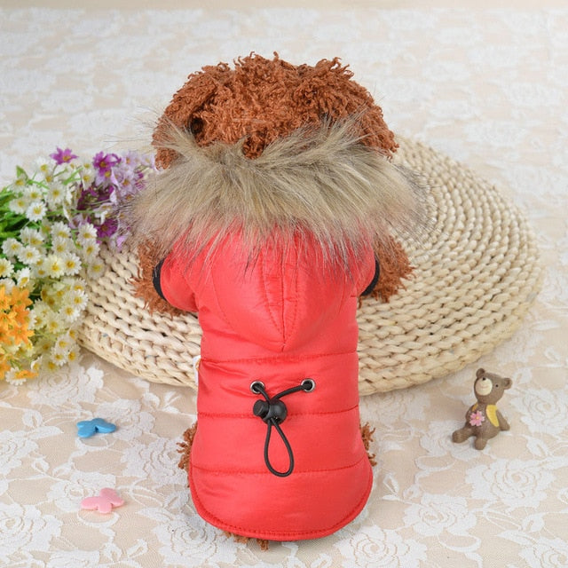 Hoodie Warm Cotton Dog Clothes