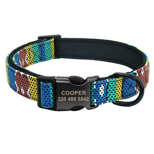 Personalized Nylon Dog Collar