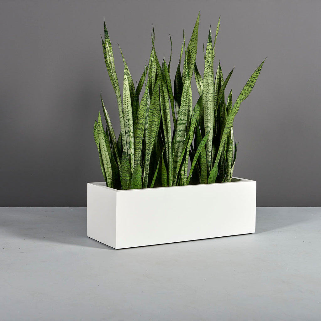 Kiel Low Rectangle Planter