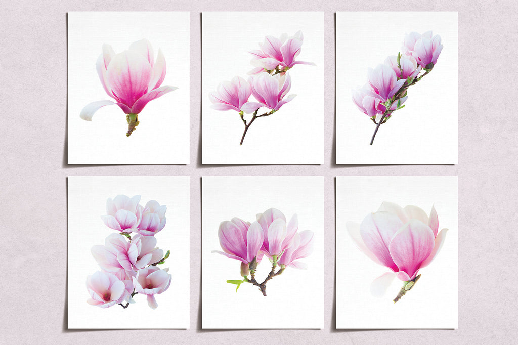 Magnolia Flower Prints (6) | Modern Wall Art | Wall Art Decor Prints Hand Drawn | Room Wall Decor | YP-1021
