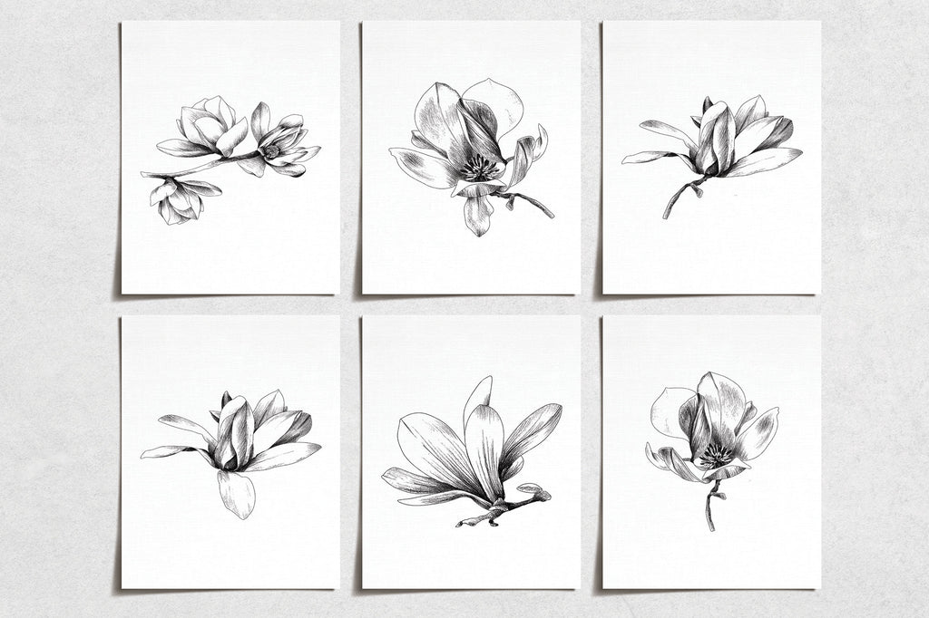 Vintage Magnolia Flower Prints (6) | Minimal Modern Wall Art | Wall Art Decor Prints Hand Drawn | Room Wall Decor | YP-1038