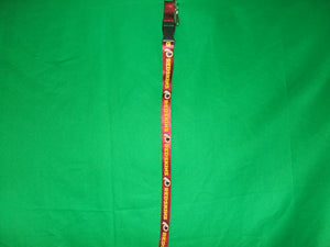 NFL Washington Redskins  Keychain lanyard