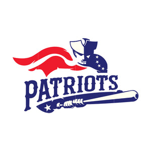 Patriots svg, patriots svg for cut
