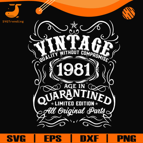 Vintage 1981 age in quarantined limited edition svg, limited edition svg, 1981 birthday svg, png, dxf, eps digital file NBD0108