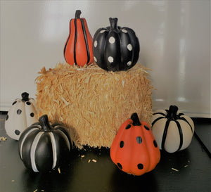 Miniature Pumpkin Set