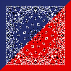 red and blue paisley bandana