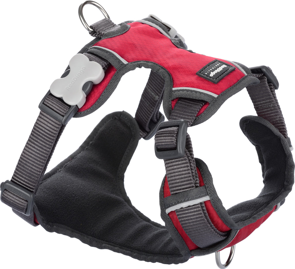 Padded Dog & Puppy Harness Love Your Pets