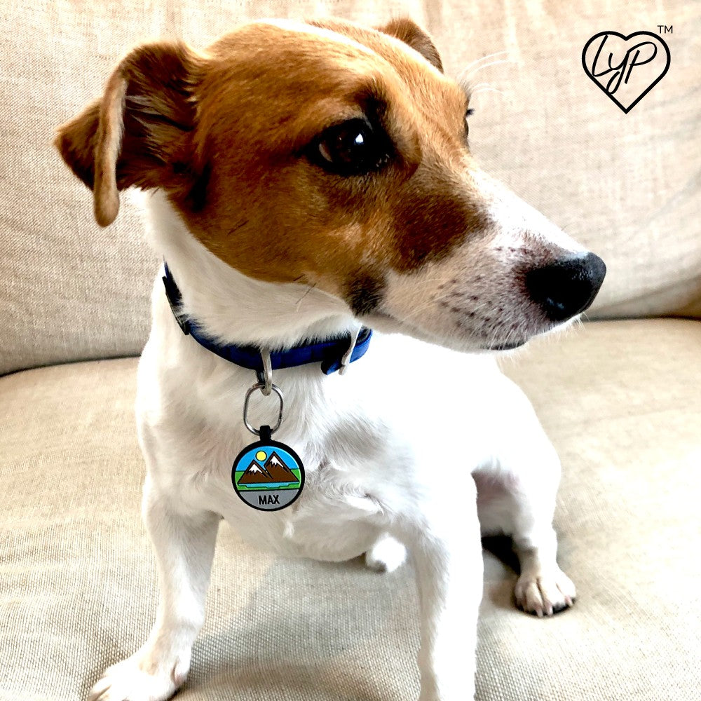 Soundless Mountain Pet Tag loveyp