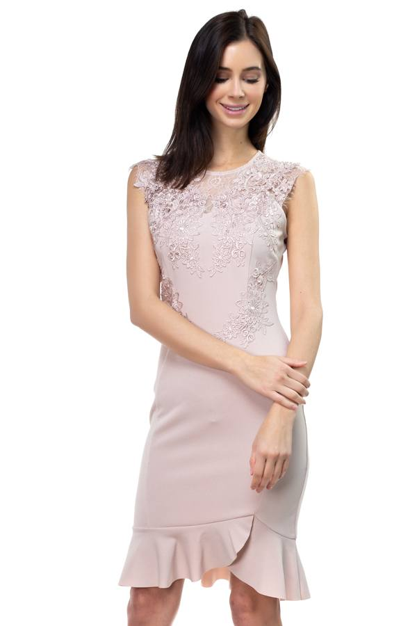 Lace Embroidered Ruffle Dress - Pinky Petals