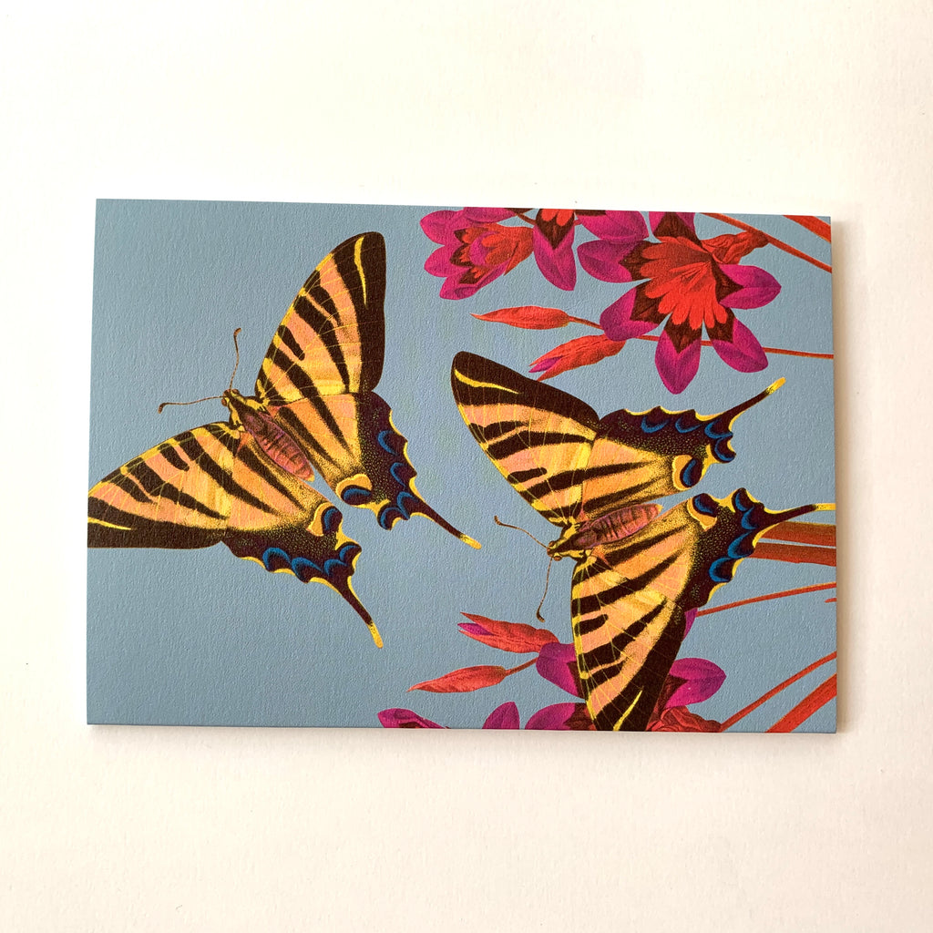 Butterfly Greeting Card.jpeg