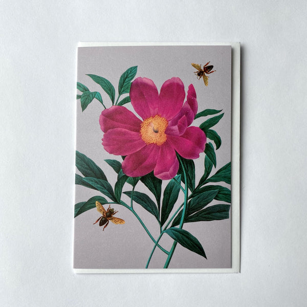 Peonie & Bee Greeting card.jpg