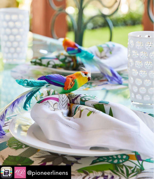 Nicolette Mayer Collection Sabi Placemats and Napkin with Kim Seybert Napkin Ring and Mario Giusti Tumblers thanks to Pioneer Linens Store