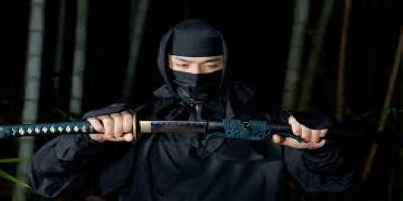 Modern Ninja Digital Library - A Comprehensive Guide to Modern Day Ninjisu and Kung FU