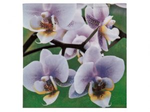 Paper Luncheon Napkin Pk/20 Orchid