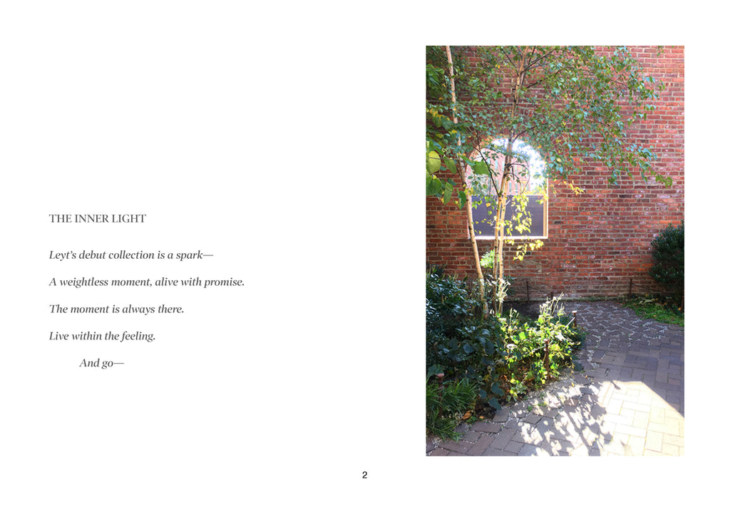 Page 2 of lookbook, tree and brick with a poetic mission statement.