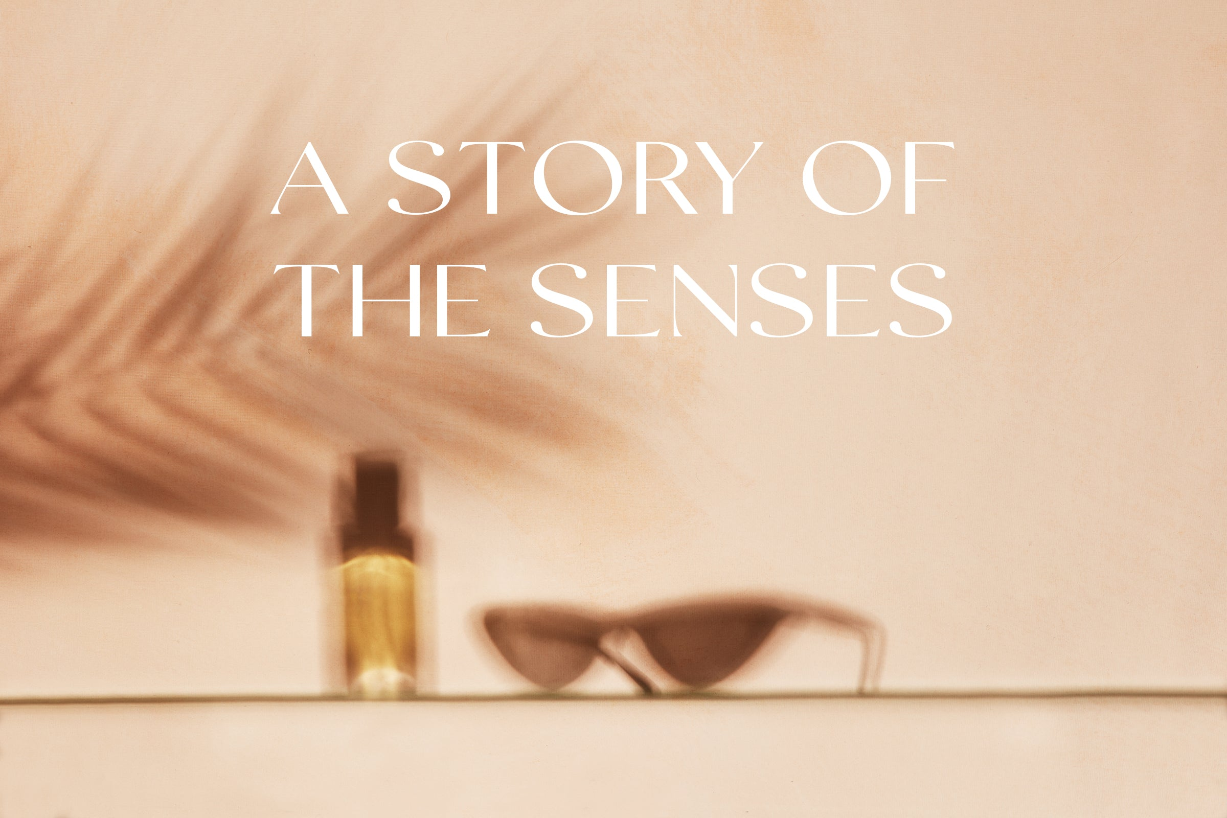 A STORY OF THE SENSES