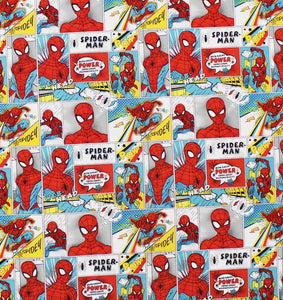 Style 14: Spiderman Comic Strip