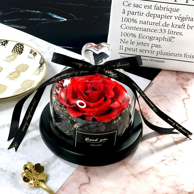 Exclusive Rose In Glass Dome With Lights - Shopptique
