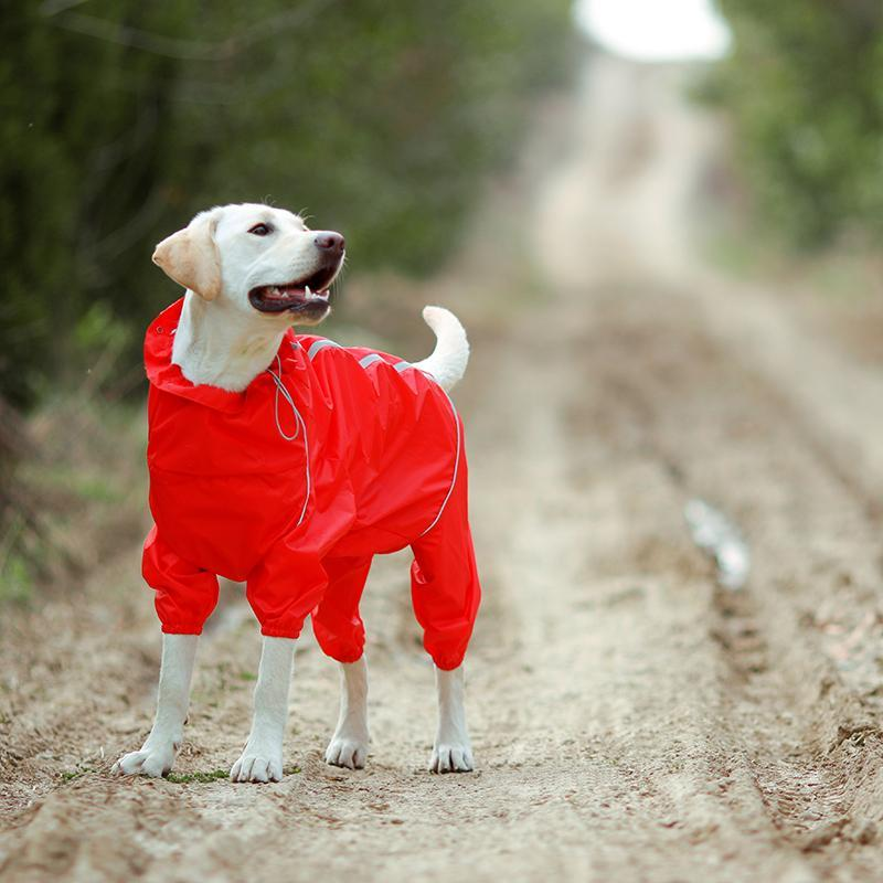 Premium Dog Raincoat Jacket - Shopptique
