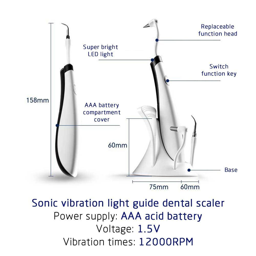 Dental Ultrasonic Plaque/Tartar Scaler & Calculus Stain Remover Tooth Scaler - Shopptique
