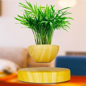 Levitating Magnetic Bonsai Tree Planter Pot Lime - Shopptique