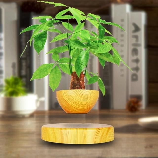 Levitating Magnetic Bonsai Tree Planter Pot Yellow - Shopptique
