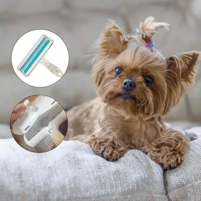 Reusable Pet Hair Remover Blue - Shopptique
