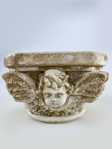 Angel Capital Planter