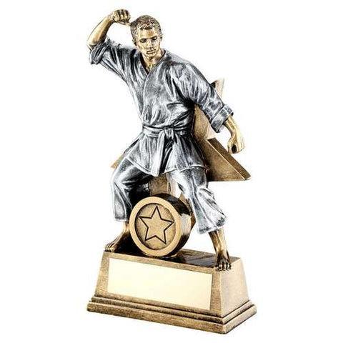 Martial Arts MALE Resin Trophy RF185