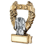 Martial Arts Resin Award RF491