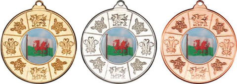 Wales/Welsh 50mm Medal & Ribbon (M89)