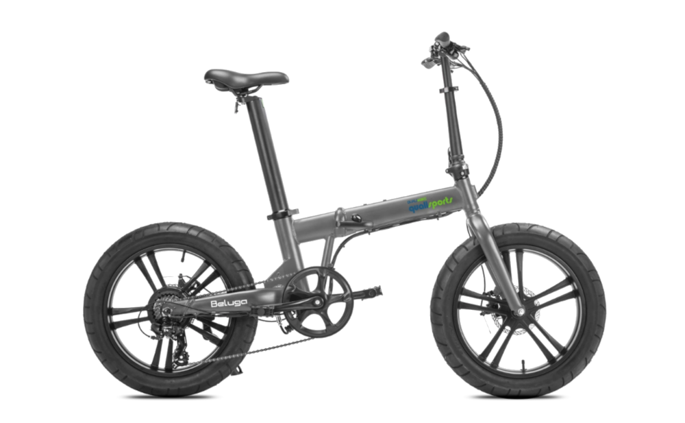 QUALISPORTS Beluga, Folding Electric Bicycle, 500w 48v