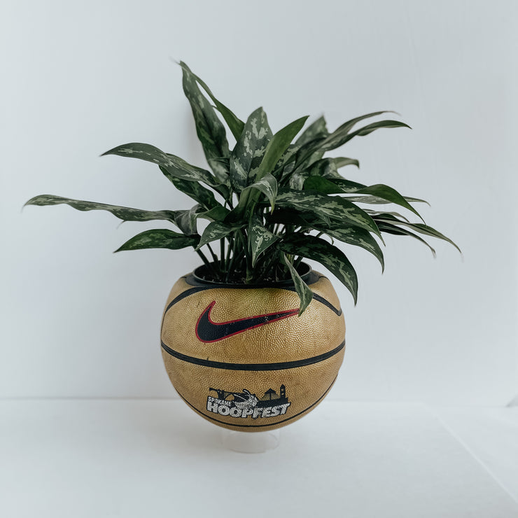 2016 Nike Hoopfest Basketball Planter