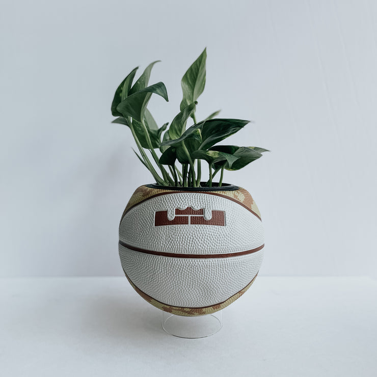LeBron Mini-Basketball Planter